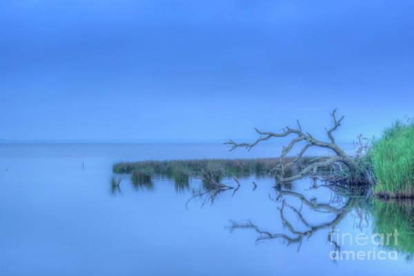 Wall Art - Digital Art - Good Morning Sea by Randy Steele