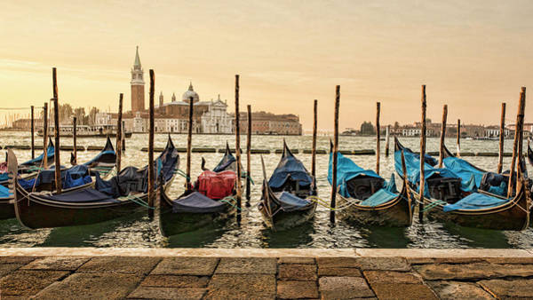 Photograph - Good Morning Venice by Mary Buck
