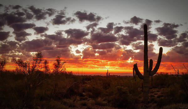 Photograph - Good Night Arizona by Rick Furmanek