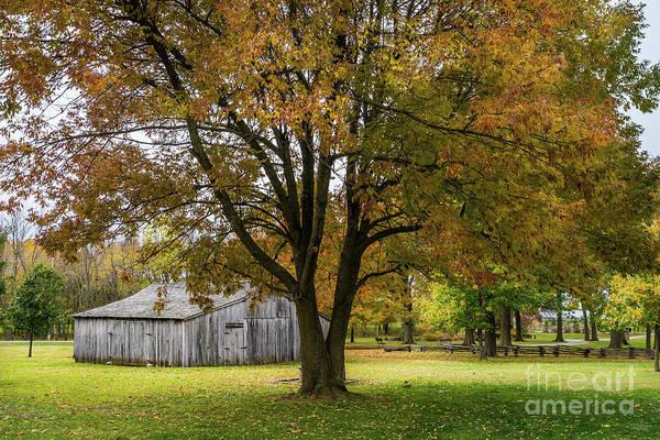 Wall Art - Photograph - Good Old Autumn Days by Jennifer White