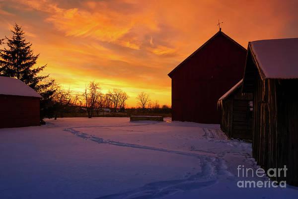 Photograph - Goodnight Farm by Rachel Cohen