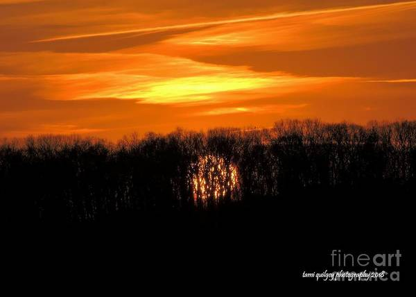 Photograph - Goodnight Sun by Tami Quigley