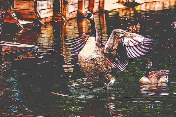 Photograph - Goose Spreading Wings Cool Paint by Don Northup
