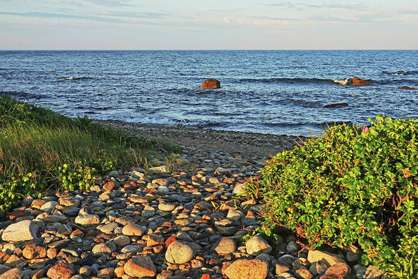 Photograph - Gooseberry Island Path To The Beach Westport Ma by Toby McGuire