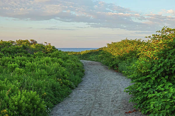 Photograph - Gooseberry Island Path To The Ocean Westport Ma by Toby McGuire