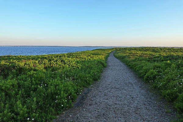 Photograph - Gooseberry Island Path Westport Ma by Toby McGuire