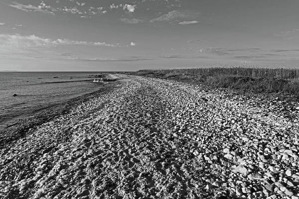 Photograph - Gooseberry Island Rocky Beach Westport Ma Black And White by Toby McGuire