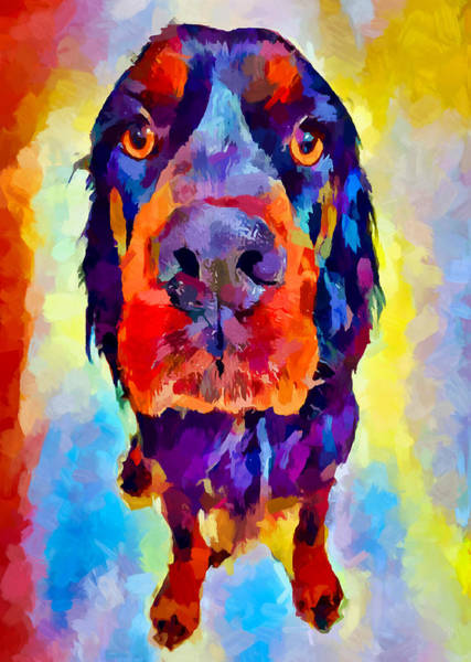 Wall Art - Painting - Gordon Setter by Chris Butler