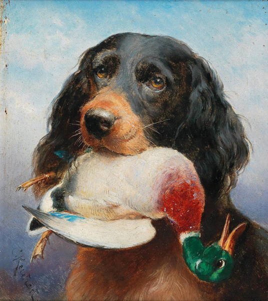Painting - Gordon Setter With Mallard Duck by Carl Reichert