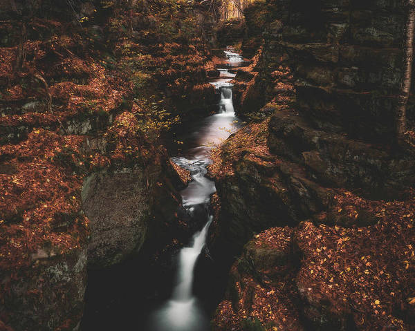 Photograph - Gorge In Autumn by Tailor Hartman