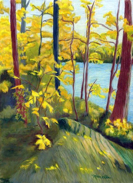 Grey Skies Drawing - Gorge Park In Autumn by Marcella Chapman