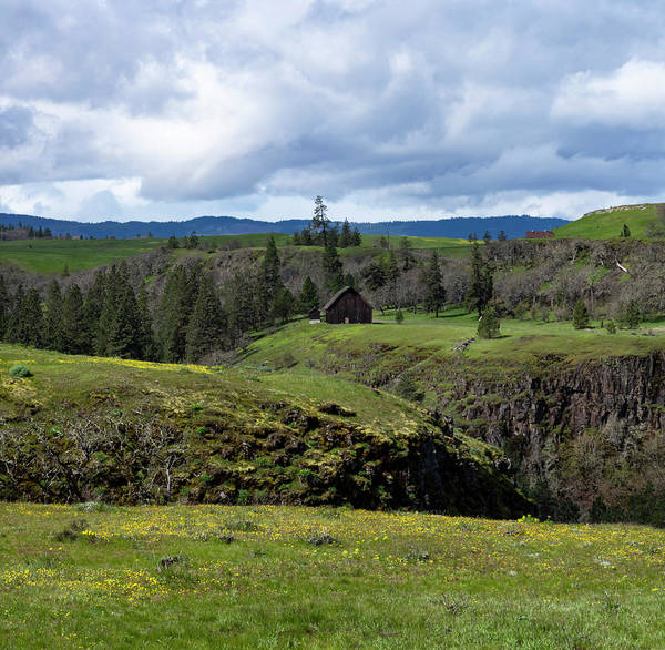 Photograph - Gorge Spring by Steven Clark