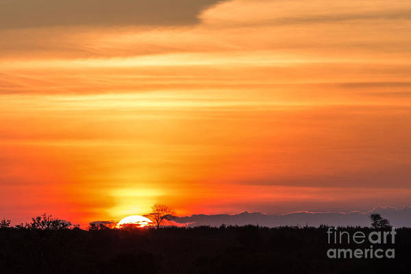 Wall Art - Photograph - Gorgeous African Sunset In Kruger by Stephen Lew