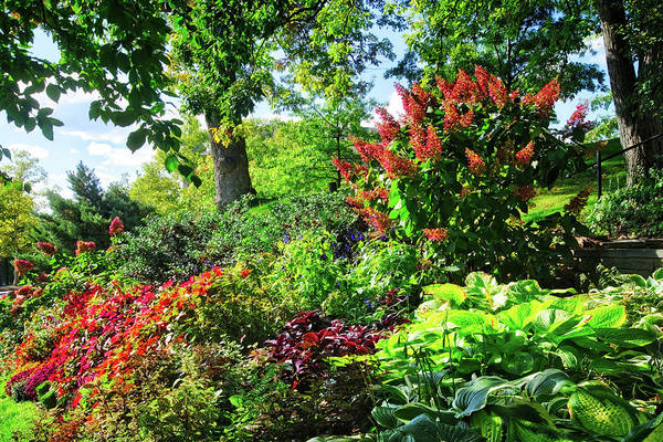Photograph - Gorgeous Gardens At Cornell University - Ithaca, New York by Lynn Bauer