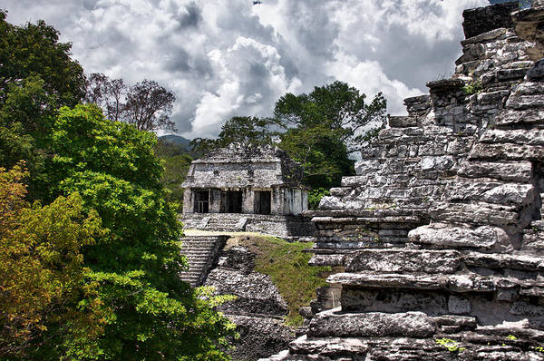 Photograph - Gorgeous Palenque by David Resnikoff