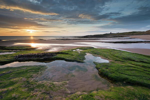 Seaweed Photograph - Gorgeous Sunrise Over Embleton Beach by Adam Burton / Robertharding