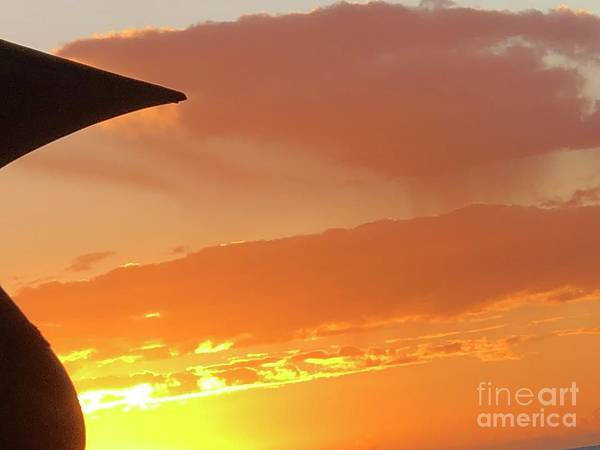 Photograph - Gorgeous Sunset by Karen Nicholson