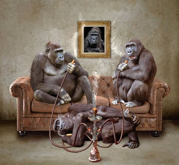 Wall Art - Painting - Gorilla Family by ArtMarketJapan