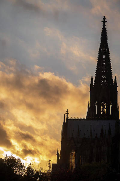 Photograph - Gothic Cathedral At Sunset by Mary Lee Dereske