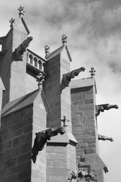 Wall Art - Photograph - Gothic Gargoyles by Andy Donald