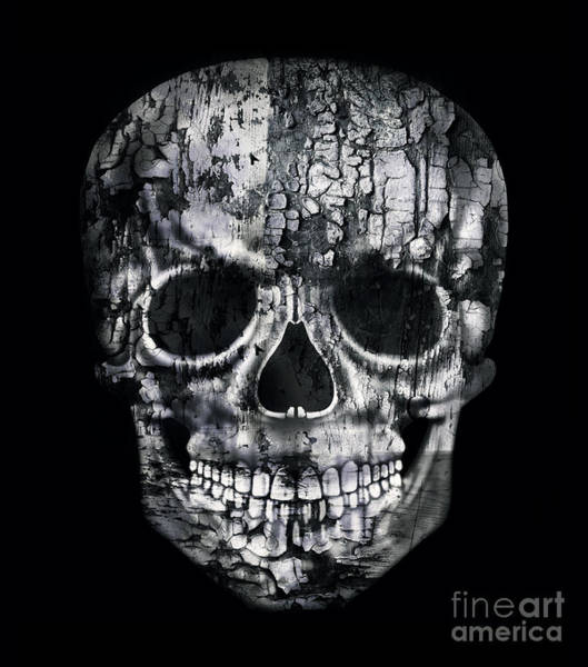 Wall Art - Digital Art - Gothic Image Of A Human Skull In Black by Valentina Photos
