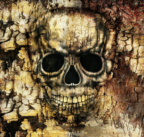 Gloomy Wall Art - Digital Art - Gothic Image Of A Human Skull by Valentina Photos