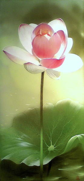 Painting - Graceful Lotus Flower by Alina Oseeva