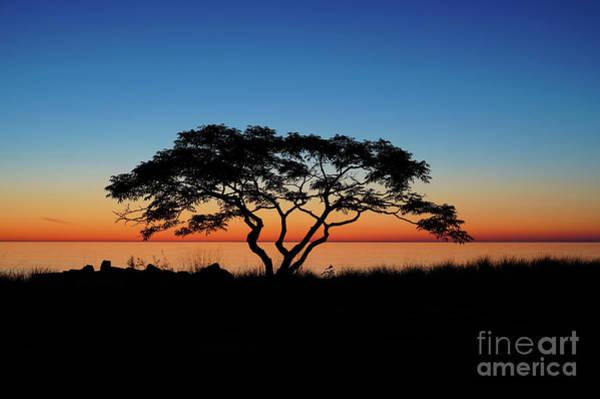 Photograph - Graduated Sunrise Silhouette by Rachel Cohen
