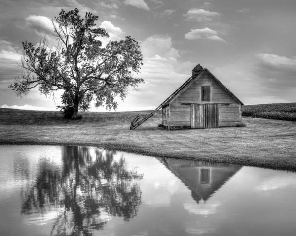 Nebraska Landscape Photograph - Grain Barn - Lone Tree by Nikolyn McDonald