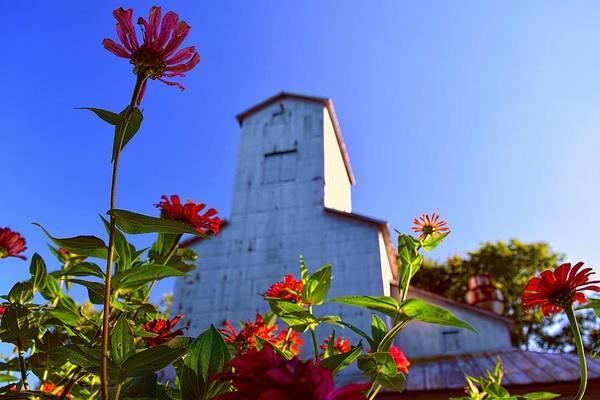 Photograph - Grain Elevator Adornment by Jack Wilson