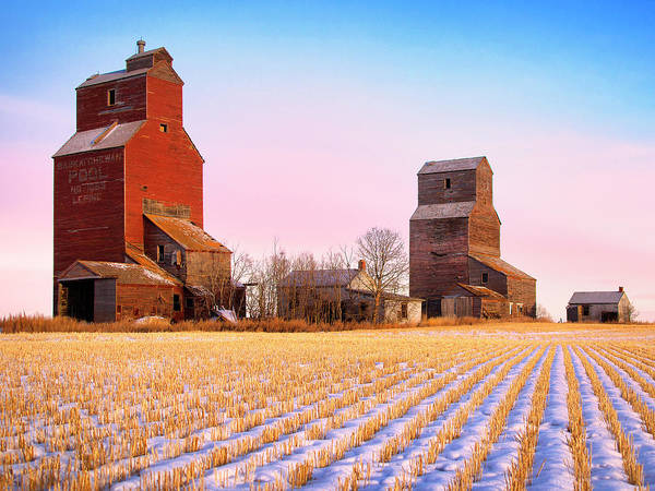 Photograph - Grain Elevators Canadian Prairie by Dominic Piperata