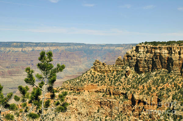 Wall Art - Photograph - Grand Canyon 08 by Andrew Dinh