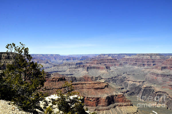 Wall Art - Photograph - Grand Canyon 09 by Andrew Dinh