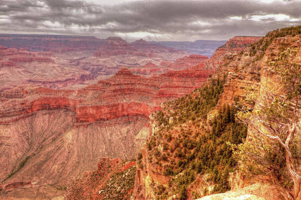 Photograph - Grand Canyon, #1 by Dorothy Cunningham