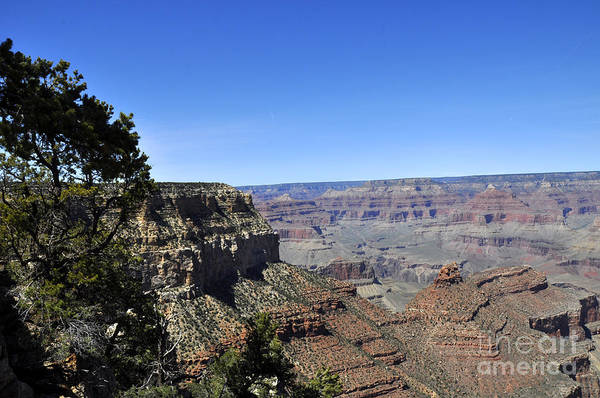 Wall Art - Photograph - Grand Canyon 12 by Andrew Dinh