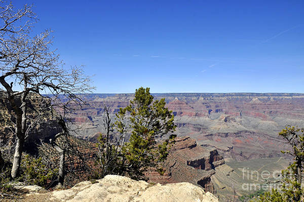 Wall Art - Photograph - Grand Canyon 13 by Andrew Dinh