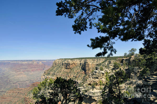 Wall Art - Photograph - Grand Canyon 18 by Andrew Dinh