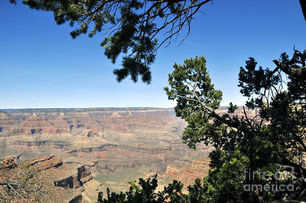 Wall Art - Photograph - Grand Canyon 19 by Andrew Dinh
