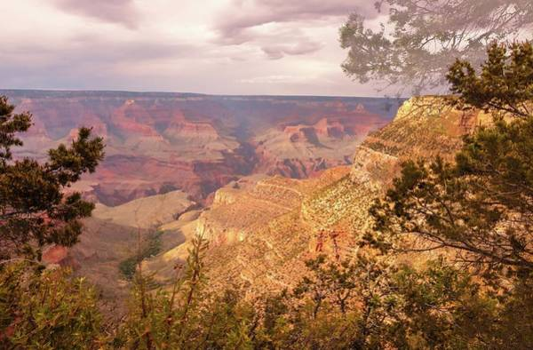 Photograph - Grand Canyon, #5 by Dorothy Cunningham