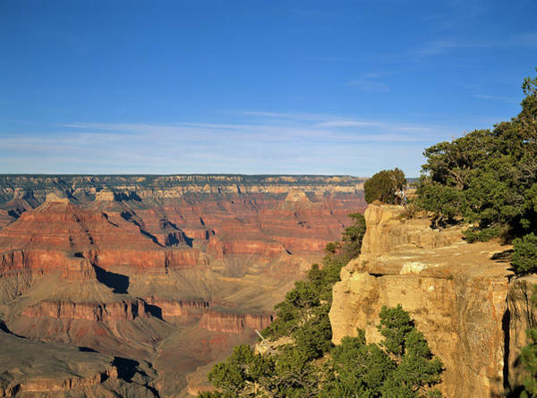 Grand Canyon, Arizona, Usa Art Print by Travel Ink