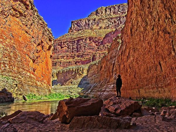 Photograph - Grand Canyon From The River by Walt Sterneman