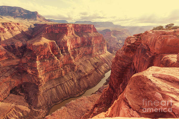 Geological Wall Art - Photograph - Grand Canyon by Galyna Andrushko