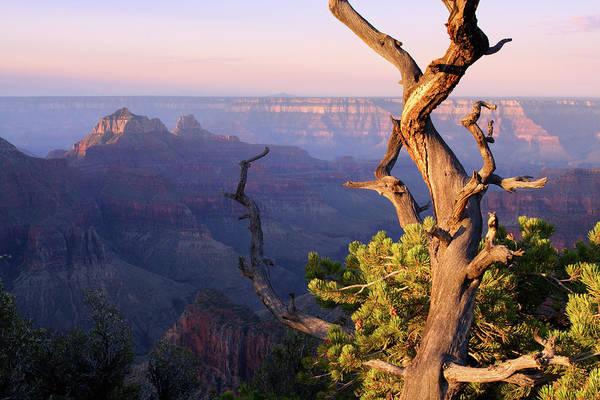 North Rim Photograph - Grand Canyon Landscape by Michieldb