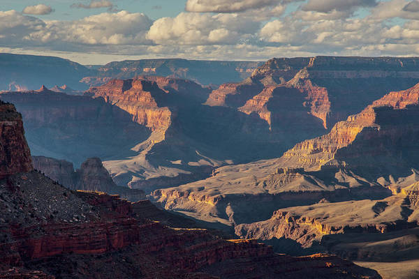 Photograph - Grand Canyon Layers  by Matthew Irvin