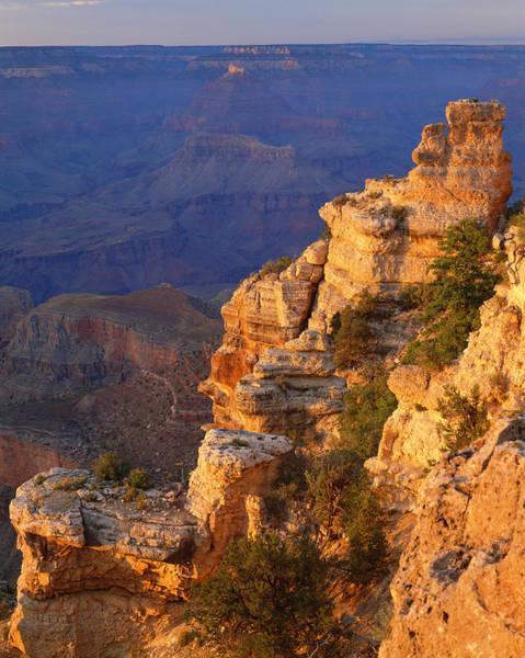 North Rim Photograph - Grand Canyon National Park   P by Ron thomas