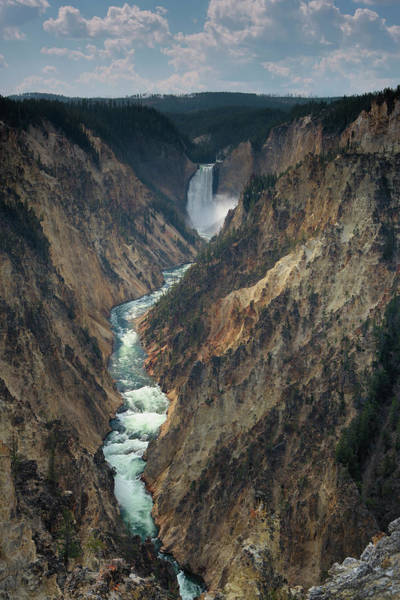 Yellowstone Canyon Photograph - Grand Canyon Of The Yellowstone by Don Smith