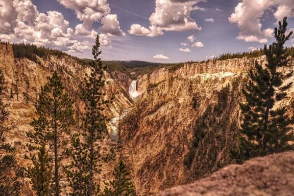 Photograph - Grand Canyon Of Yellowstone by Chance Kafka