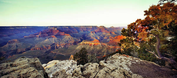 North Rim Photograph - Grand Canyon Panorama At Sunset by Costint