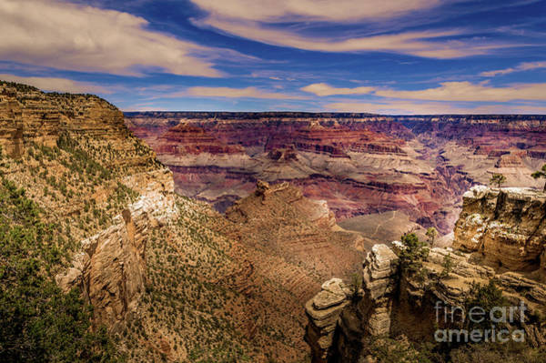Photograph - Grand Canyon South Rim #6 by Blake Webster