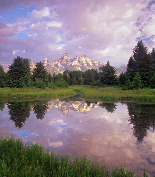 Wall Art - Photograph - Grand Teton Reflection, Grand Teton by Tim Fitzharris